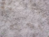 Vliesdoek 17 gram/m² 100 x 12.00 meter