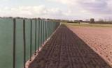 Windschermgaas met paalsleuf 50  x 1,50 m
