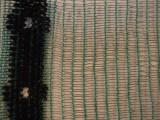 Schaduwgaas mono 30 100 x 4.00 meter groen
