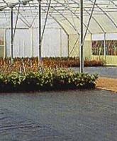 Tuinbouw 2
